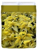 Golden Poinsettias Duvet Cover