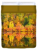 Golden Reflection Duvet Cover
