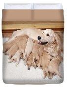 Golden Retriever Dog, Litter Suckling Duvet Cover