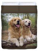 Golden Retriever Dogs Duvet Cover