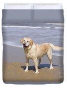 Golden Retriever On Beach Duvet Cover
