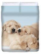 Golden Retriever Puppies Asleep Duvet Cover