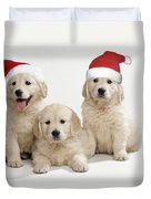 Golden Retriever Puppies With Christmas Duvet Cover
