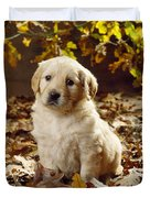 Golden Retriever Puppy Dog In Fallen Duvet Cover