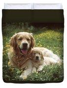 Golden Retrievers Dog And Puppy Duvet Cover