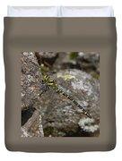 Golden-ringed Dragonfly Duvet Cover