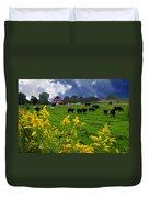 Golden Rod Black Angus Cattle  Duvet Cover