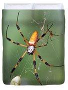 Golden Silk Spider Capturing A Stinkbug Duvet Cover