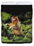 Golden Snub-nosed Monkey Male China Duvet Cover