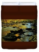 Golden View Of The Little River In Autumn Duvet Cover by Dan Sproul