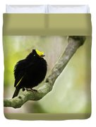 Golden-winged Manakin Duvet Cover