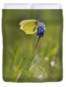 Gonepteryx Rhamni On The Blue Flower Duvet Cover