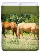 Marble Falls Texas In Good Grass Duvet Cover