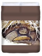 Gopher Tortoise Duvet Cover
