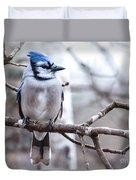 Gorgeous Blue Jay Duvet Cover