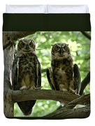 Gorgeous Great Horned Owls Duvet Cover