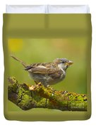 Gorrion House Sparrow Duvet Cover
