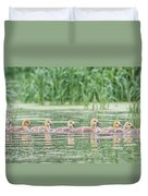 Goslings All In A Row Duvet Cover