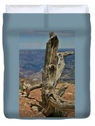 Grand Canyon And Dead Tree 2  Duvet Cover