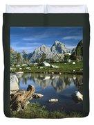 1m9374-grand Teton Reflect Duvet Cover
