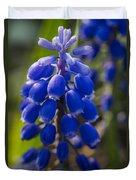 Grape Hyacinth Duvet Cover by Adam Romanowicz