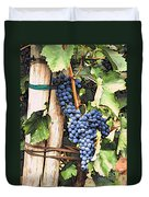 Grapes 1 Duvet Cover