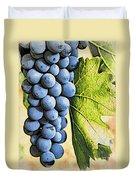 Grapes 2 Duvet Cover
