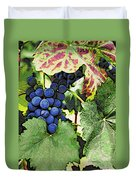 Grapes 3 Duvet Cover