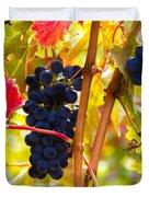 Grapes And Autumn Leaves, Napa California Duvet Cover
