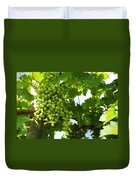 Grapes In A Vineyard Duvet Cover