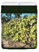 Grapes On The Vine Duvet Cover