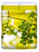 Grapes On The Vine - Finger Lakes Vineyard Duvet Cover