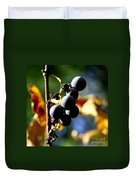 Grapes On The Vine In Square  Duvet Cover by Neal Eslinger
