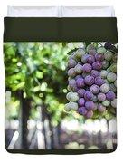 Grapes On Vine 2 Duvet Cover