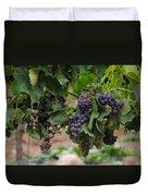 Grapes On Vine Duvet Cover