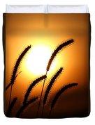 Grasses At Sunset - 2 Duvet Cover