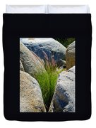 Grasses In Oasis On Borrego Palm Canyon Trail In Anza-borrego Desert Sp-ca Duvet Cover