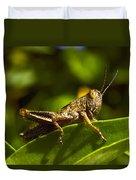 Grasshopper Macro Duvet Cover