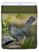 Gray Catbird Drinking Duvet Cover