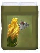 Gray Hairstreak Butterfly Duvet Cover