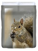 Gray Squirrel - D008392  Duvet Cover