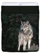 Gray Wolf Endangered Species Wildlife Rescue Duvet Cover