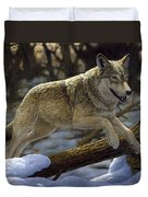 Gray Wolf - Just For Fun Duvet Cover by Crista Forest