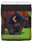 Grazing Buffaloes Duvet Cover