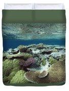 Great Barrier Reef Near Port Douglas Duvet Cover