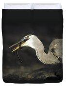 Great Blue Heron Eating Marine Iguana Duvet Cover by Tui De Roy