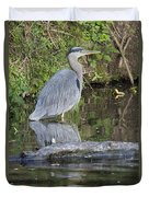 Great Blue Heron Standing In Water Duvet Cover
