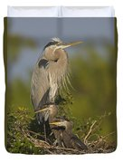 Great Blue Heron With Chicks Florida Duvet Cover