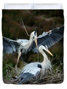 Great Blue Herons Nesting Duvet Cover