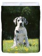 Great Dane Puppy Duvet Cover